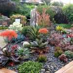 How to Plant Succulents in the Ground: Creative Succulent Garden Ideas 10
