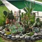 How to Plant Succulents in the Ground: Creative Succulent Garden Ideas 11