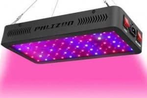 Phlizon LED Grow Light 600w Review – UPDATED 2020