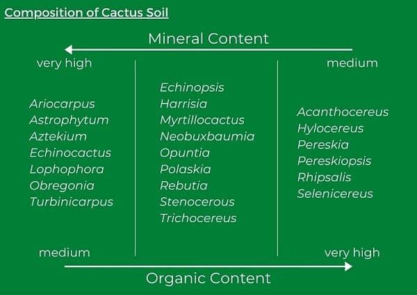 best soil for cactus