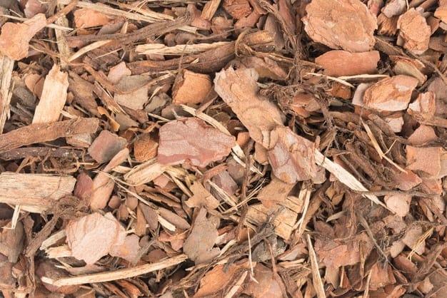 pine bark as mulch