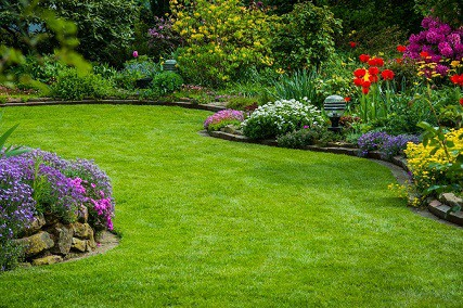 7 Tips To Help Keep Your Lawn Looking Good In Winter