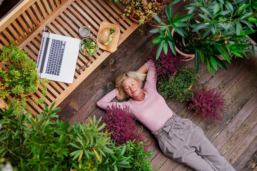 How Buying Plants Can Bring A Fresh Feel To Your Home 1