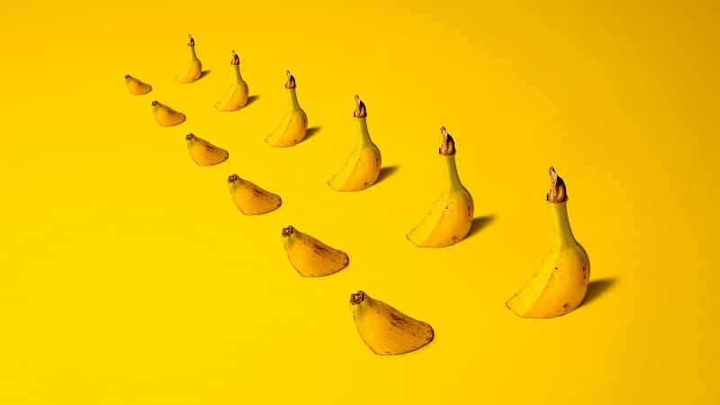 banana peel tea fertilizer
