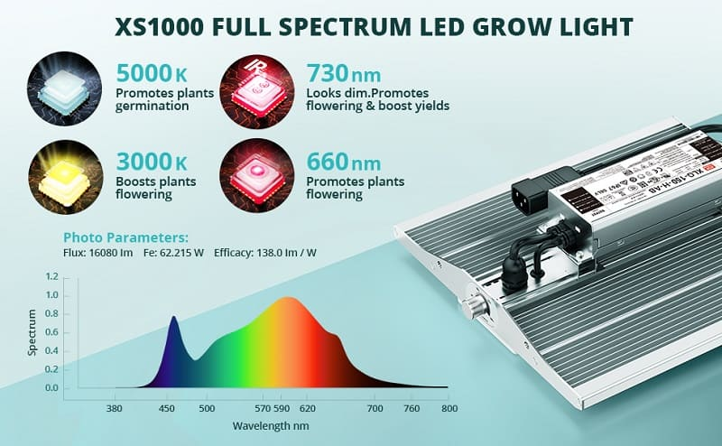 viparspectra xs1000 full spectrum