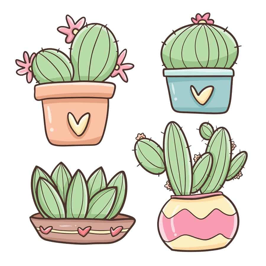 how do you draw a cute cactus