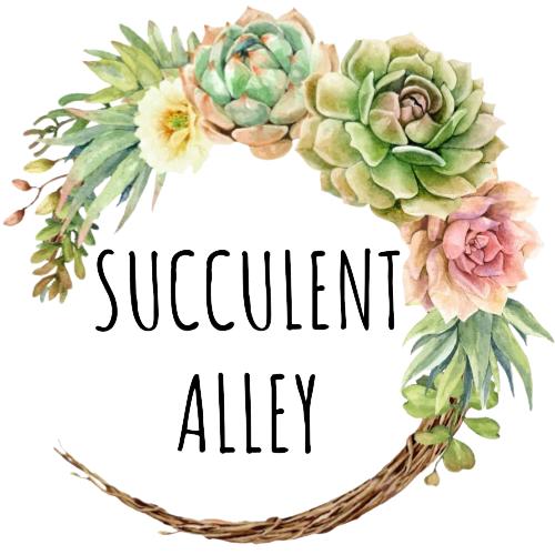 Succulent Alley Logo Transparent